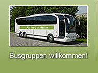 Bussreisen